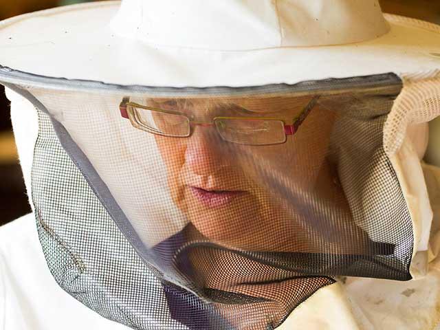 tegen-muggen-helpt
