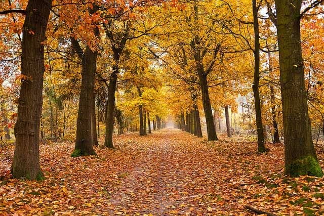 KAMPEERPRAAT  8 redenen waarom ik van kamperen in de herfst hou!