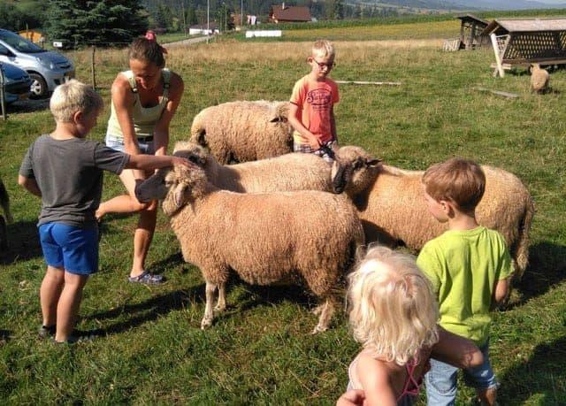 CAMPINGS  Campingtip: Sedliacky Dvor camping in Slowakije met Nederlandse eigenaren