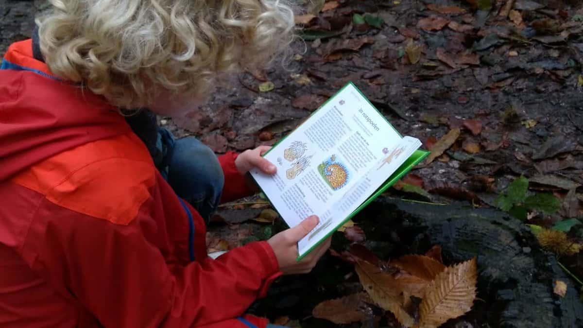 7 kinderboeken voor op de camping!