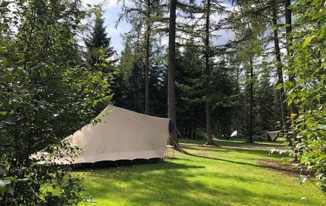 Campingtip: Kamperen in het bos op natuurkampeerterrein Borger