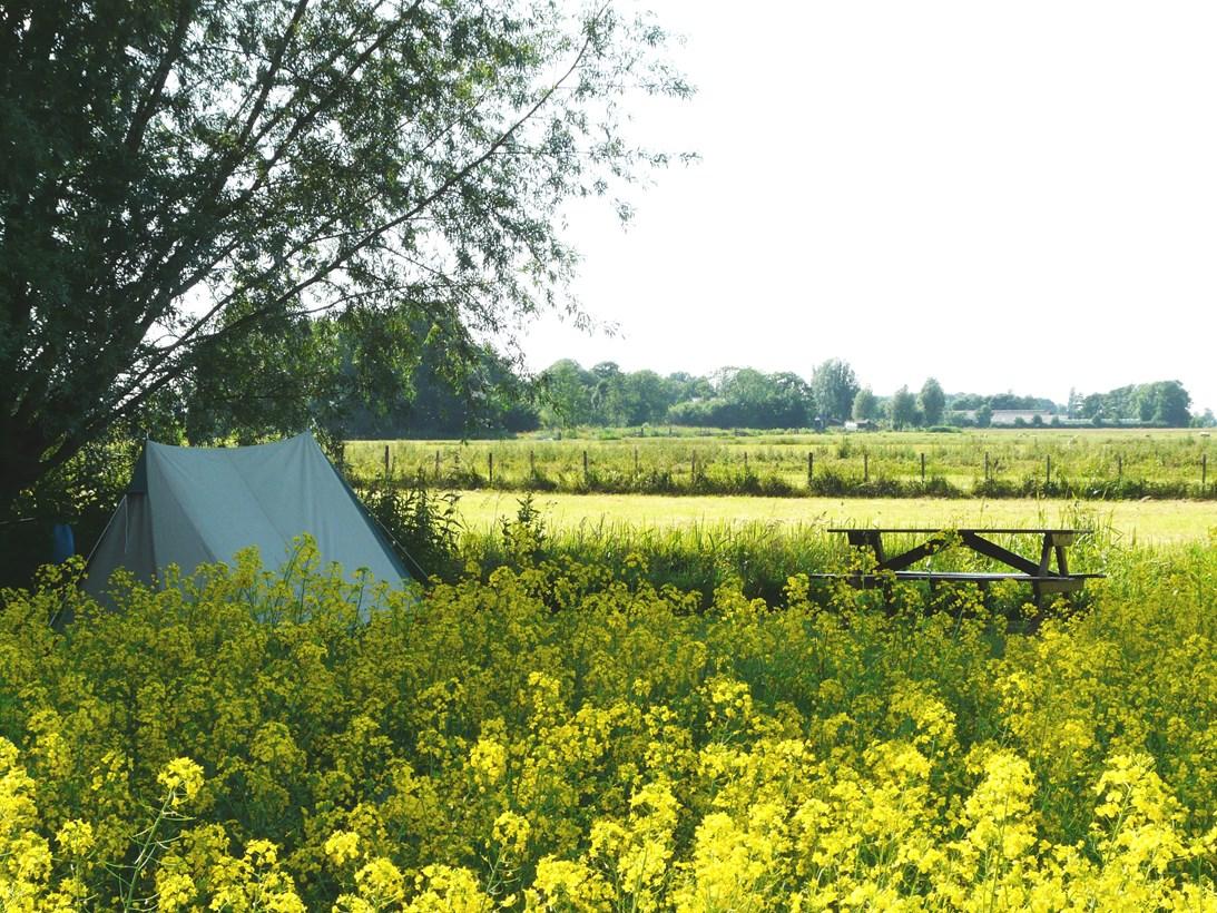 camping natuurkampeerterrein de amstelkade 7