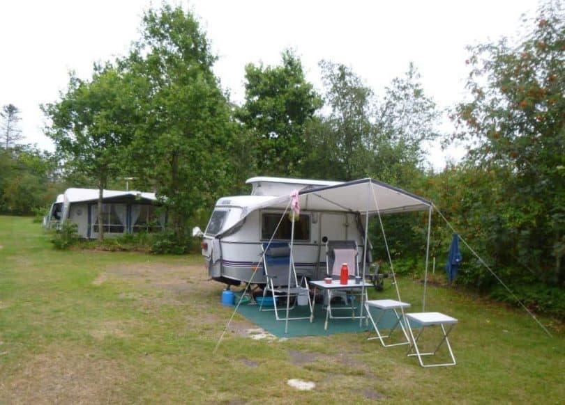 camping ringkobing 1